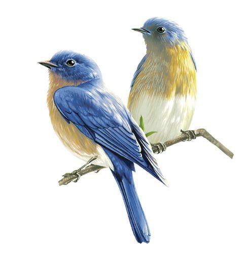 Birds 4 (29).png
