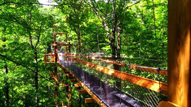 Holden Arboretum Canopy Walk and Emergent Tower | 2016 Republican National Convention In Cleveland
