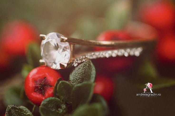 Sedinta foto logodna - Gabriela & Adrian - fotograf profesionist Andreia Gradin