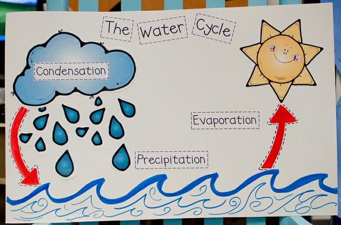 Learning About Weather: The Water Cycle
