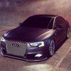 Audi sedans & coupes collections 0007