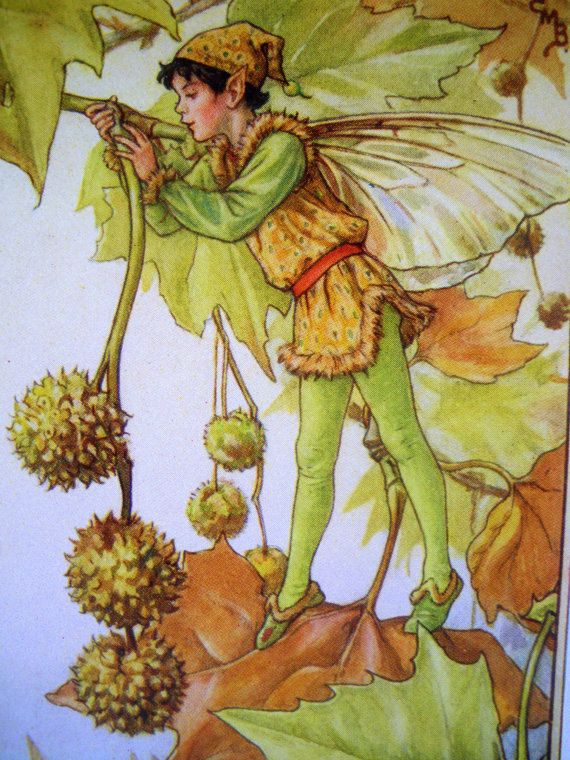 1930s The PLANE TREE FAIRY Cicely Mary by sandshoevintageprint