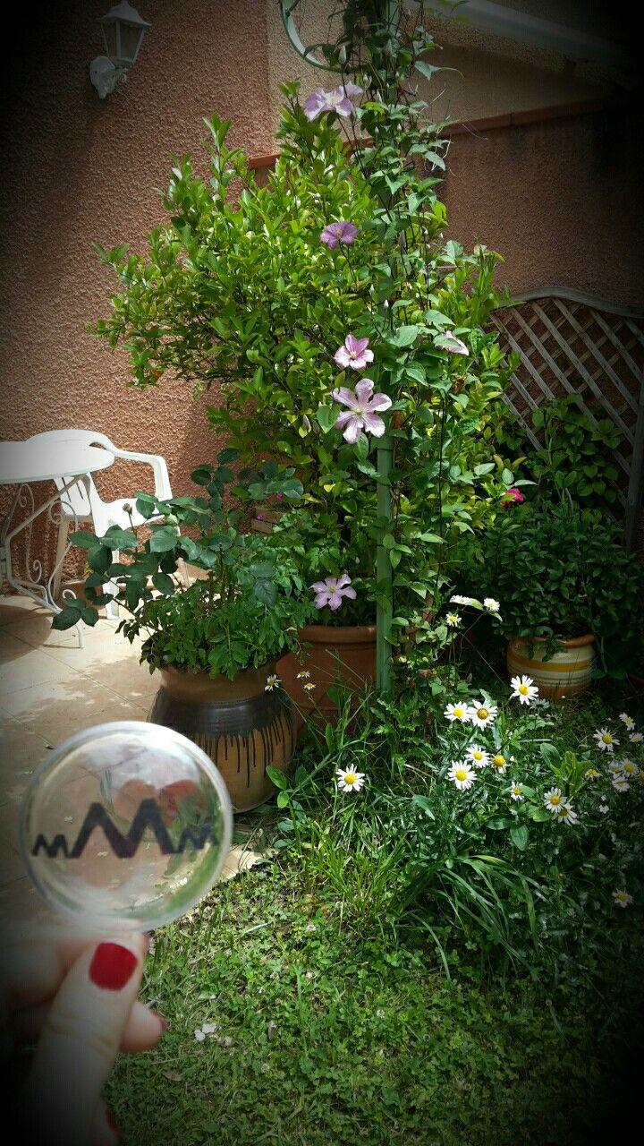 Détente dans le jardin à Toulouse