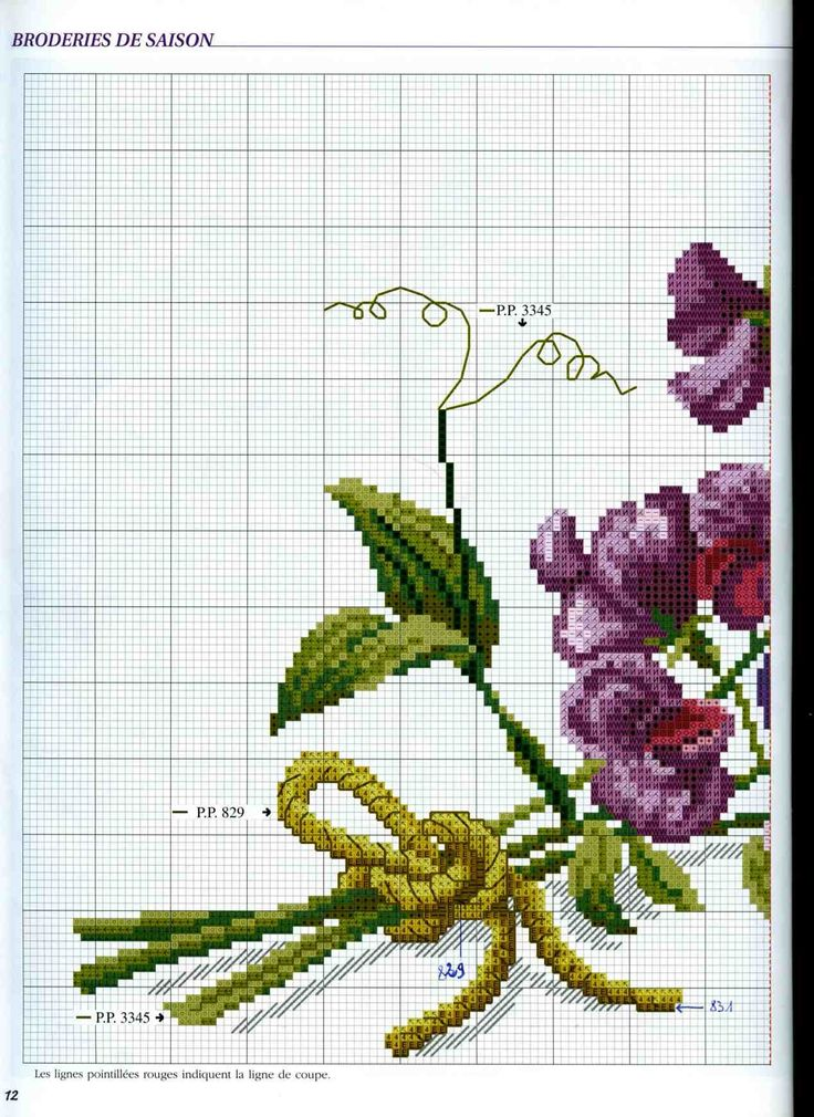 bouquet orchidee1