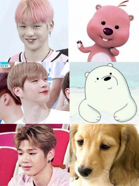 He's so cute || Kang Daniel