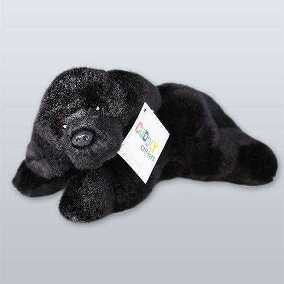 'Midnight' Puppy - Guide Dogs Queensland