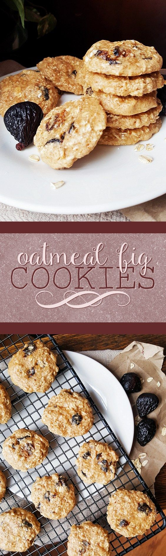 {Healthy, Low Calorie, Vegan} A classic favorite gets a new twist in these sweet, chewy oatmeal fig cookies! They're a delicious treat and they're good for you, too!