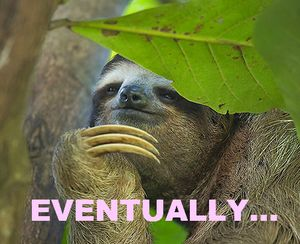 Best Sloth Memes: Not soon... eventually.