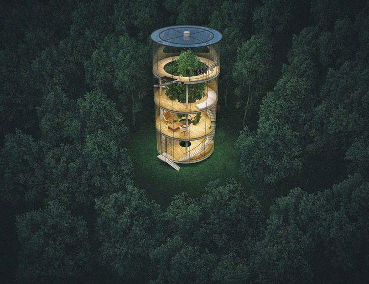 Conoce la impresionante casa tubular de cristal que está construida alrededor de un árbol #viral