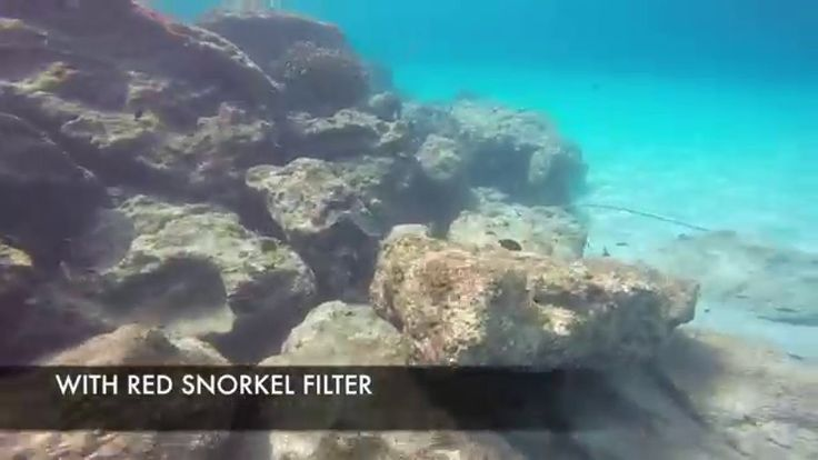 gopro red filter philippines | GoPro Polar Pro Red Snorkel Filter Demo - WATCH VIDEO HERE -> http://pricephilippines.info/gopro-red-filter-philippines-gopro-polar-pro-red-snorkel-filter-demo/      Click Here for a Complete List of GoPro Price in the Philippines  *** gopro red filter philippines ***  GoPro Polar Pro Red Snorkel Filter Demo Video credits to the YouTube channel owner   Price Philippines