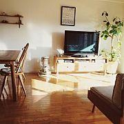 Lounge,観葉植物,ソファー,IKEA,unico,アラジンストーブに関連する他の写真