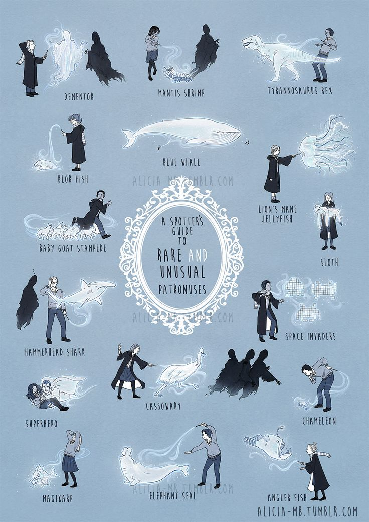 I need my Patronus to be a baby goat stampede!  A Field Guide To Unusual (And Hilarious) Harry Potter Patronuses