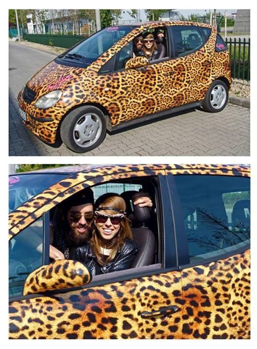 leopard print car #Varga Viktor #Cinthya Dictator
