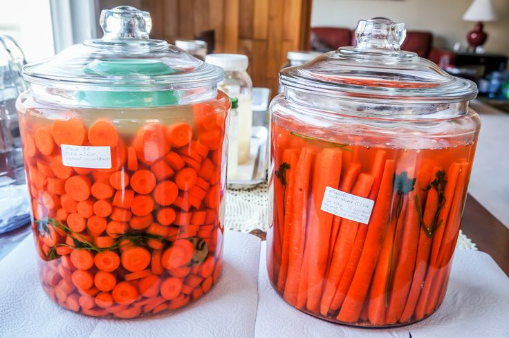 Fermented carrots awesome snacks to take on the go