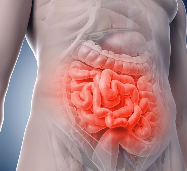 Entzündungsindex für entzündungshemmende Nahrungsmittel