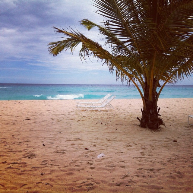 My one of many Barbados views!