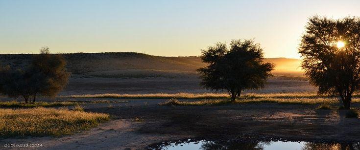Sunrise at Kgalagadi Transfrontier Park South Africa http://geogypsytraveler.com/2014/06/03/kgalagadi-transfrontier-park/