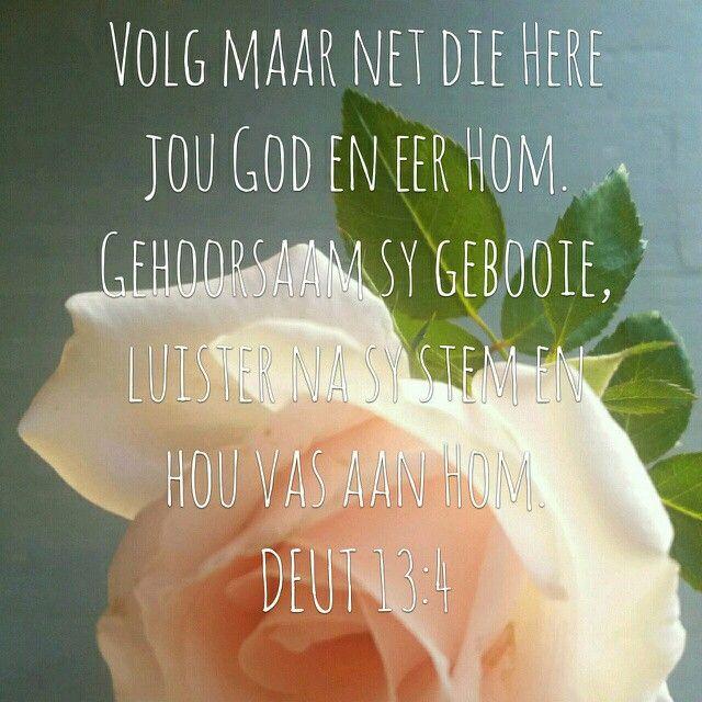 Deut 13:4