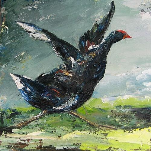 Water hen by Viola Dominello