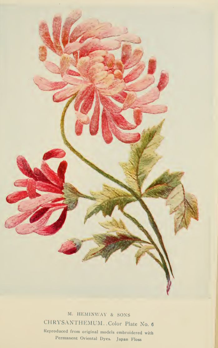 """Chrysanthemum Embroidery from """"A Treatise on Embroidery"""" published in 1907."""