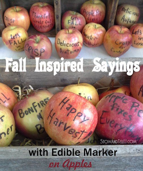 fall sayings on apples with edible writer, crafts, seasonal holiday decor