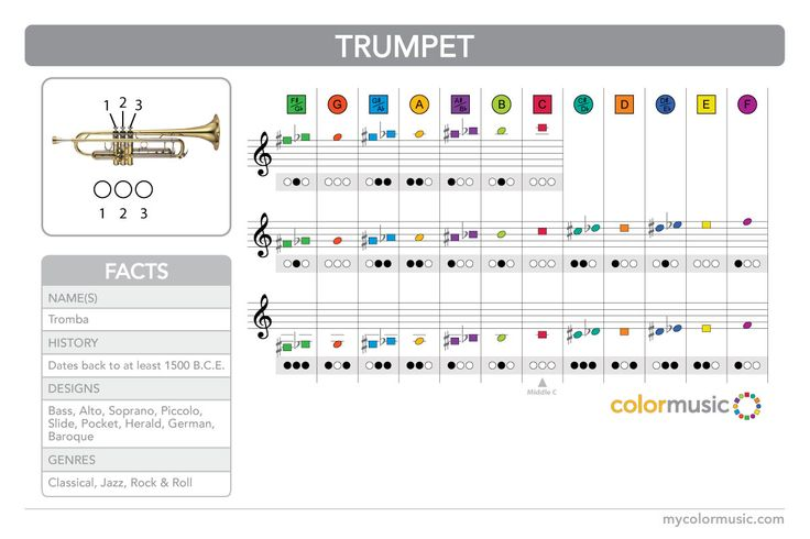 How to play the trumpet in colormusic teaching music