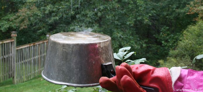 Celebrate the rain by taking your metal pots and pans outside and making rain music.