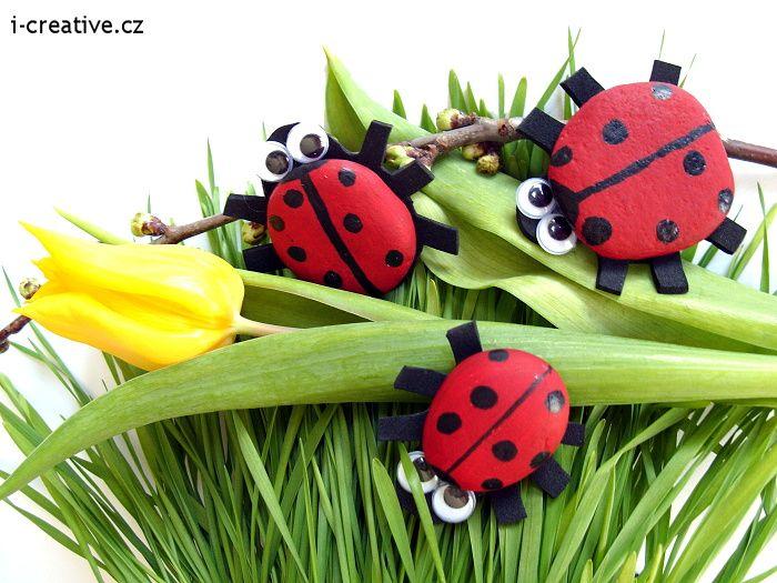 Ladybug from stone / Beruška z kamínku.