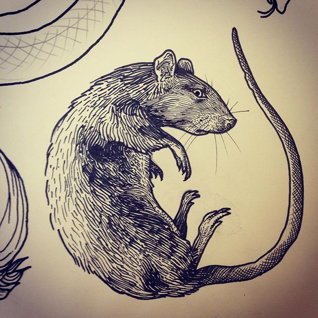 rat tattoo art on Instagram