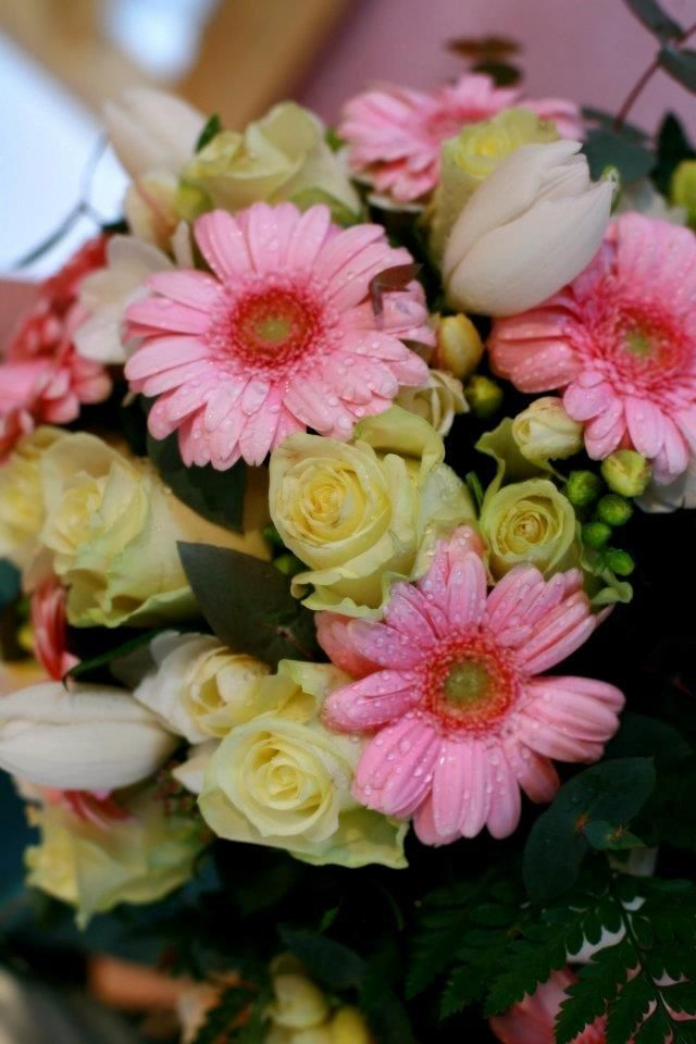 Brides bouquet of mini pink gerberas, freesias and roses