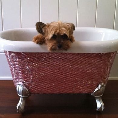 clawfoot baby bath tub. After creating a human size Swarovski crystal studded bathtub  designer Lori Gardner 28 best Baby Clawfoot Baths the cutest ever images on Pinterest