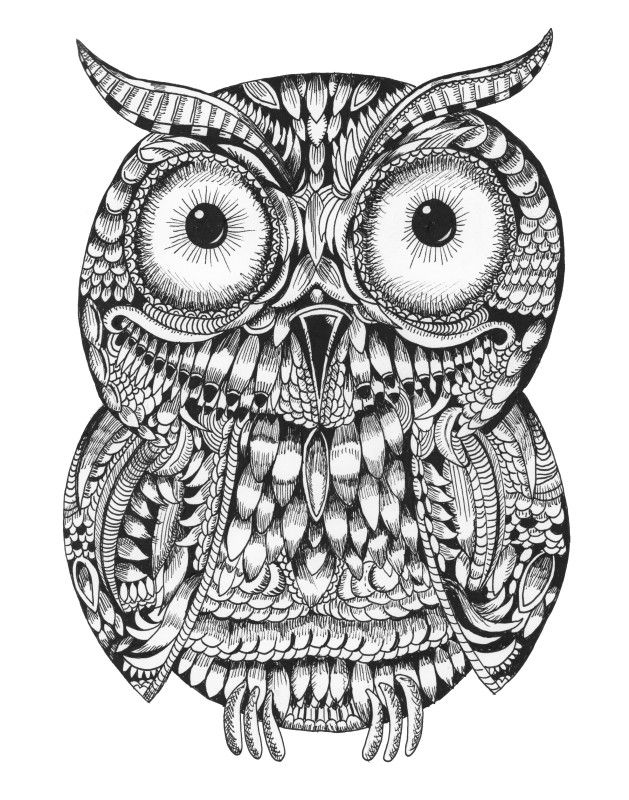 This doodle by Squidoodle is for sale on ADO http://artdiscoveredonline.co.uk/art-gallery/ornate-baby-owl/