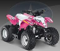 Pink four wheeler!! I NEED!!!!!