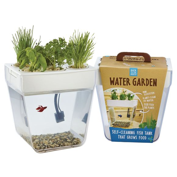 Best 25 aquaponics kit ideas on pinterest hydroponic for Fish tank herb garden