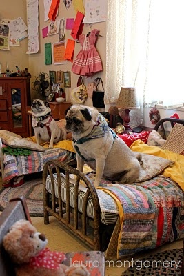 Using salesman sample furniture as dog beds.: Animals, Doggie Beds, Beds Perfect, Sample Furniture, Awsome Dogs, Dog Beds, Things, Bedroom