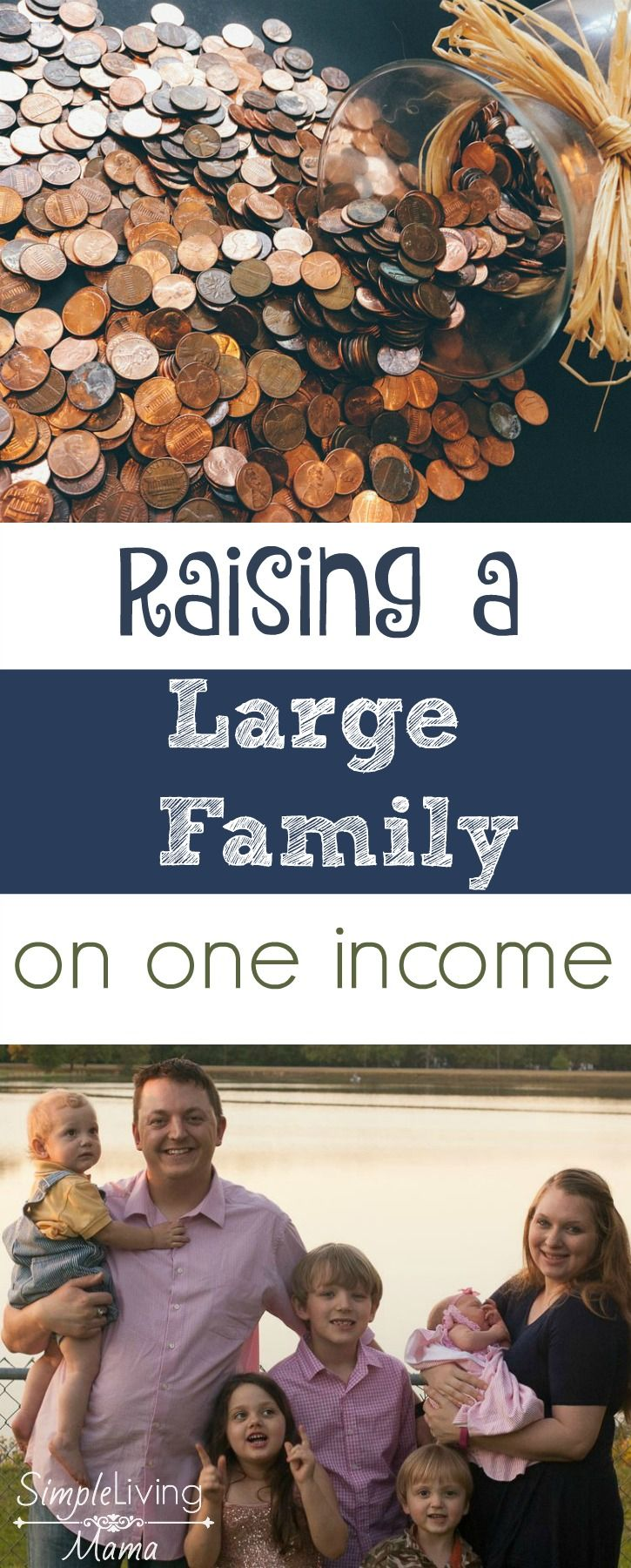 Practical tips for raising a large family on one income.