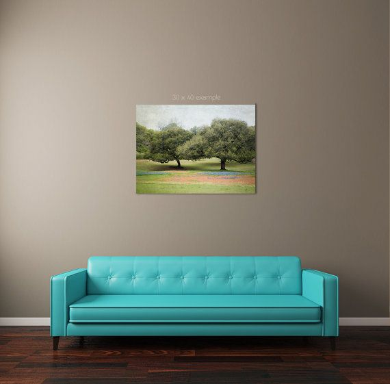 Texas landscape photography texas bluebonnets by DreameryPhoto