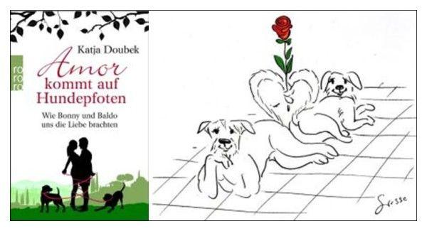 Amor kommt auf Hundepfoten - Eine Liebesgeschichte, die noch so viel mehr ist.