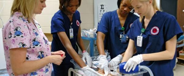 Headline for LPN To RN Bridge Programs Online