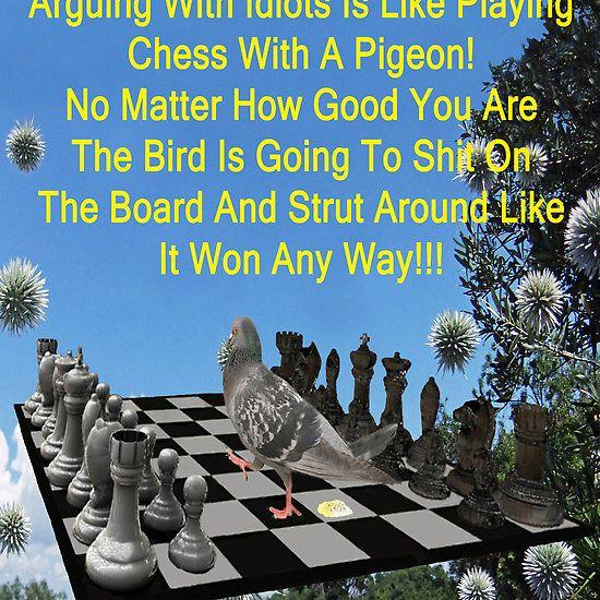 Chess Pigeon