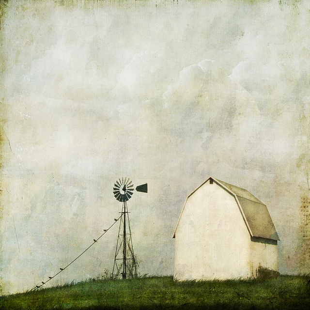 ...and then i said to the wind, by jamie heiden