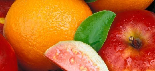 Nove alimentos para deixar a imunidade nas alturas