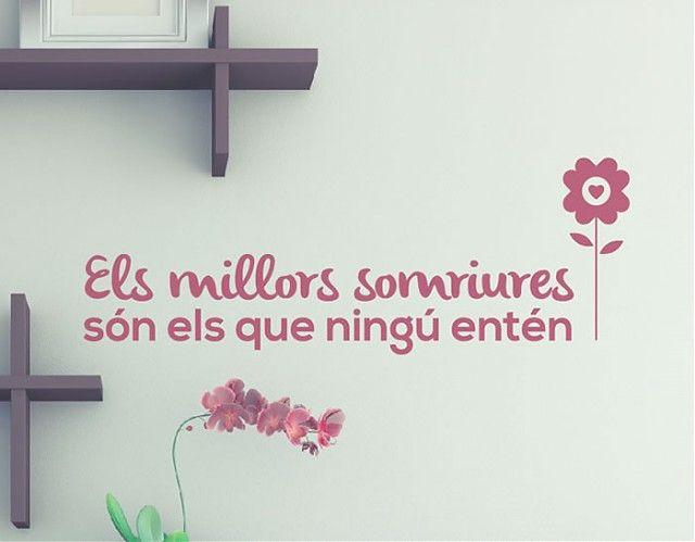 . Vinilo en catalán Els millors somriures són els que ningú entén 03578
