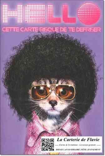 Cartes Anniversaire Collection Pets Rock, enveloppe et livraison gratuite #Carte #Anniversaire #Livraisongratuite #Birthday  à retrouver sur notre site: http://lacarteriedeflavie.com/Carte-anniversaire-humour-pets-rock