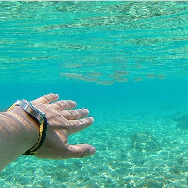 Care for a swim? Our HIRSCH Performance collection was made with the active lifestyle in mind. Repost from @remeshop.ru thanks for taking your bracelet for a swim 👌🏼.  .  .  #hirsch #hirschstrap #hirschbracelet #hirschperformance #hirschayrton #watches #swisswatches #leatherwatchstrap #uhr #armband #uhrenarmband #outdoorslife #wristgame #wristshot #watchesofinstagram #watchstrap #watchstraps #watchbracelet #leatherarmband #bracelet #strap