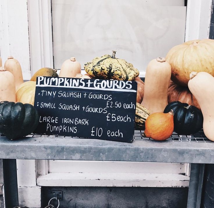 Rifling through some of the pictures I took back in London and never posted. Loved finding this gourd display at @albion_london on #redchurchstreet.  Feeling strange that soon my entire life will be American. Right now though Im bridging a life in-between. Not helped by the fact that we still (!) havent moved into our new place yet. A full update to come on stories later!  Has anyone else made a big city (or country?) move in their adult life? Whats your best advice for transitioning into…
