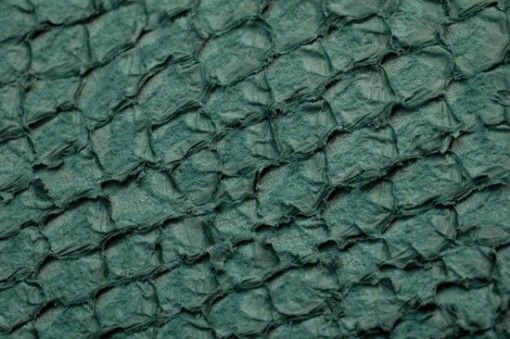 Fish leather : perch (matt finish)