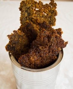Beef Jerky from Ground Beef (try ground bison, add more seasonings - maybe a teriyaki twist)