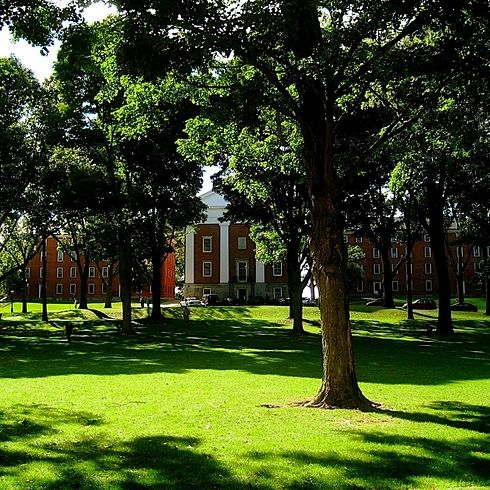 Amherst College | 41 Scenic College Campuses That Were Made For Instagram