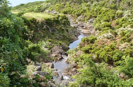 Ponta Delgada – Fajã Grande - Maps and GPS Tracks - Hiking Routes in Flores - Trails in Azores